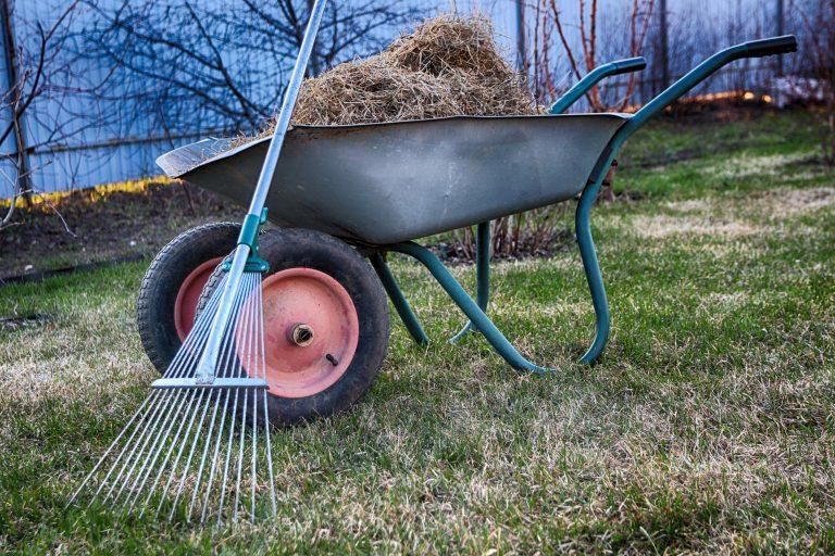 MCGAHESYSVILLE VA Lawn Dethatching